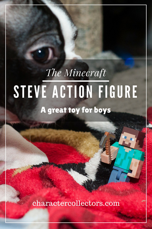 This is the most awesome of the Minecraft Steve figures. An amazing toy for kids to play with. And totally fun for boys to take outside since it's so durable.